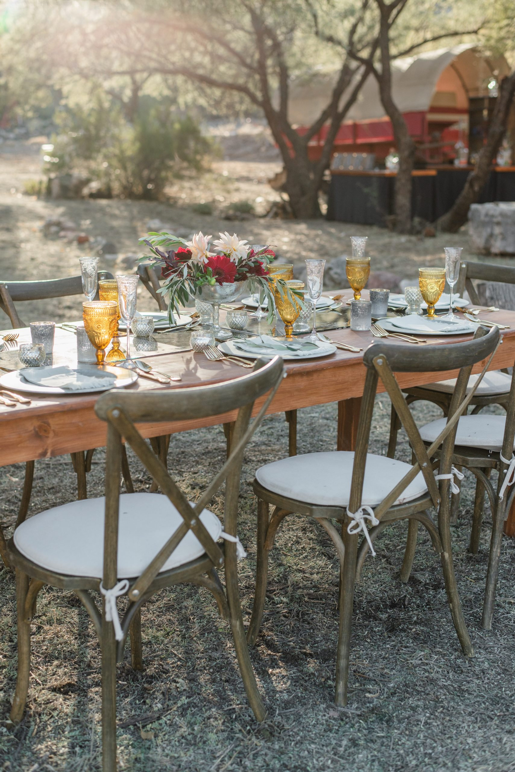 banquet-table-in-sunny-backyard-4558316