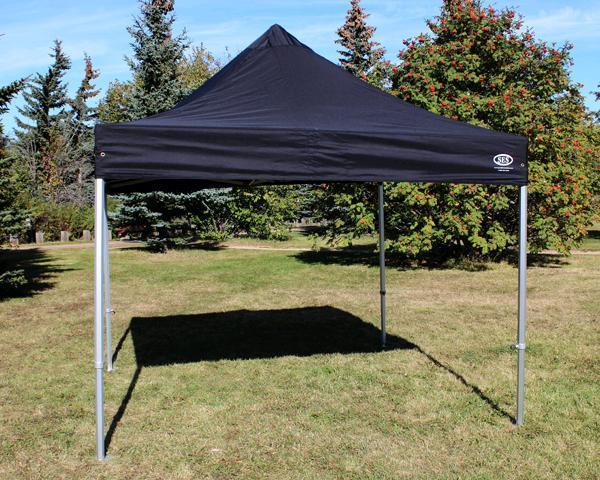 Black 10 x 10 Pop up tent